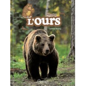 L'ours P'tit curieux