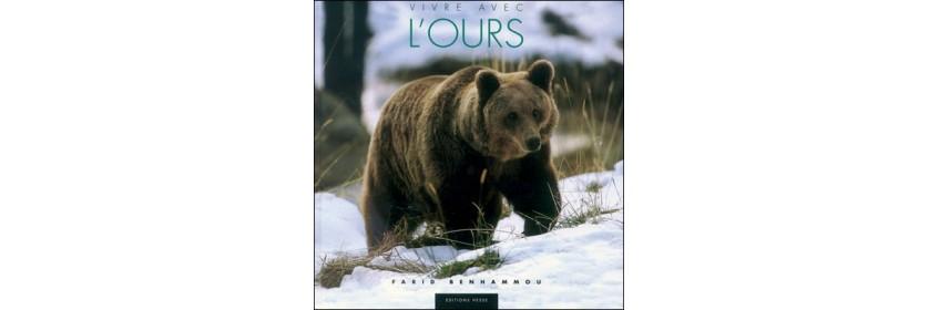 Sur l'ours